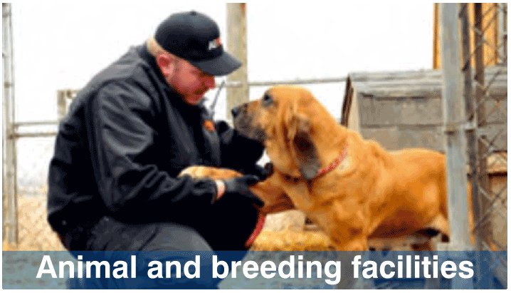 Animal and breeding facilities